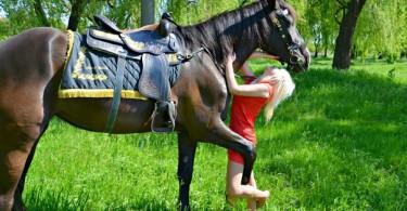 Конные прогулки, верховая езда Кривой Рог